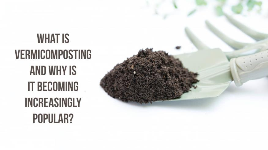 What is Vermicomposting, and why is it becoming increasingly popular